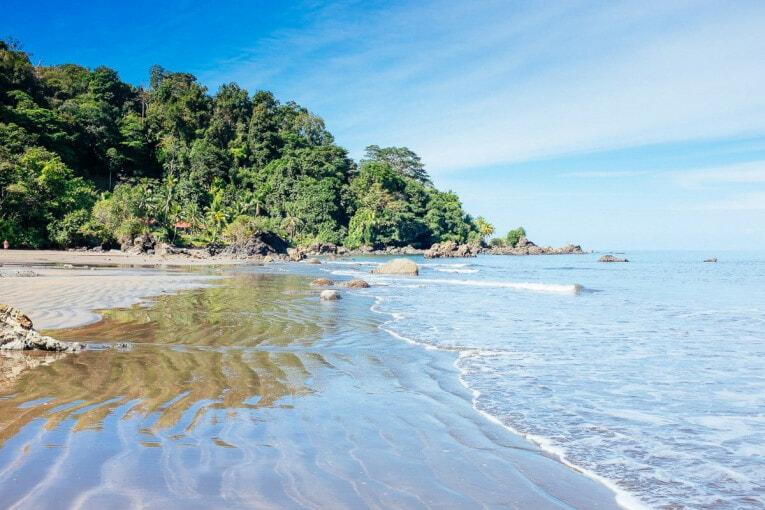 où voir les baleines à nuqui sur la côte pacifque en colombie