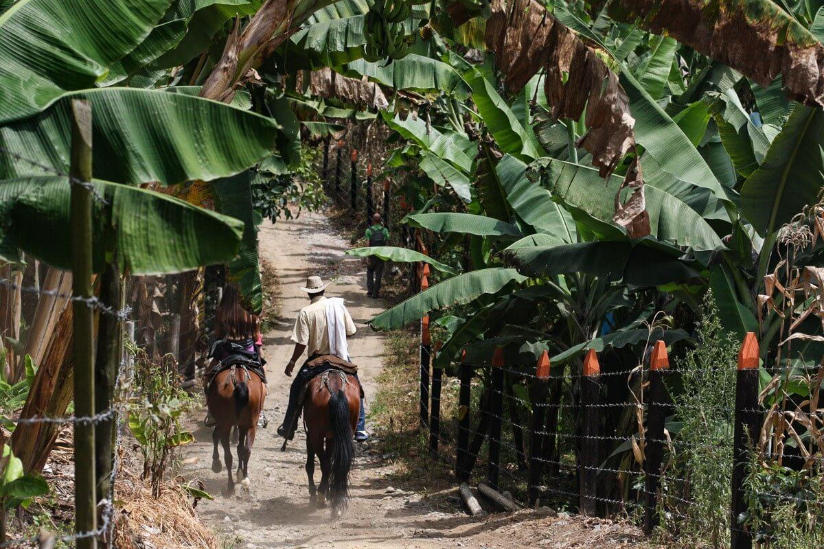 quand partir en colombie la meilleure saison pour un voyage