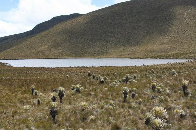 lago del encanto Trek au parc los nevados randonnée colombie