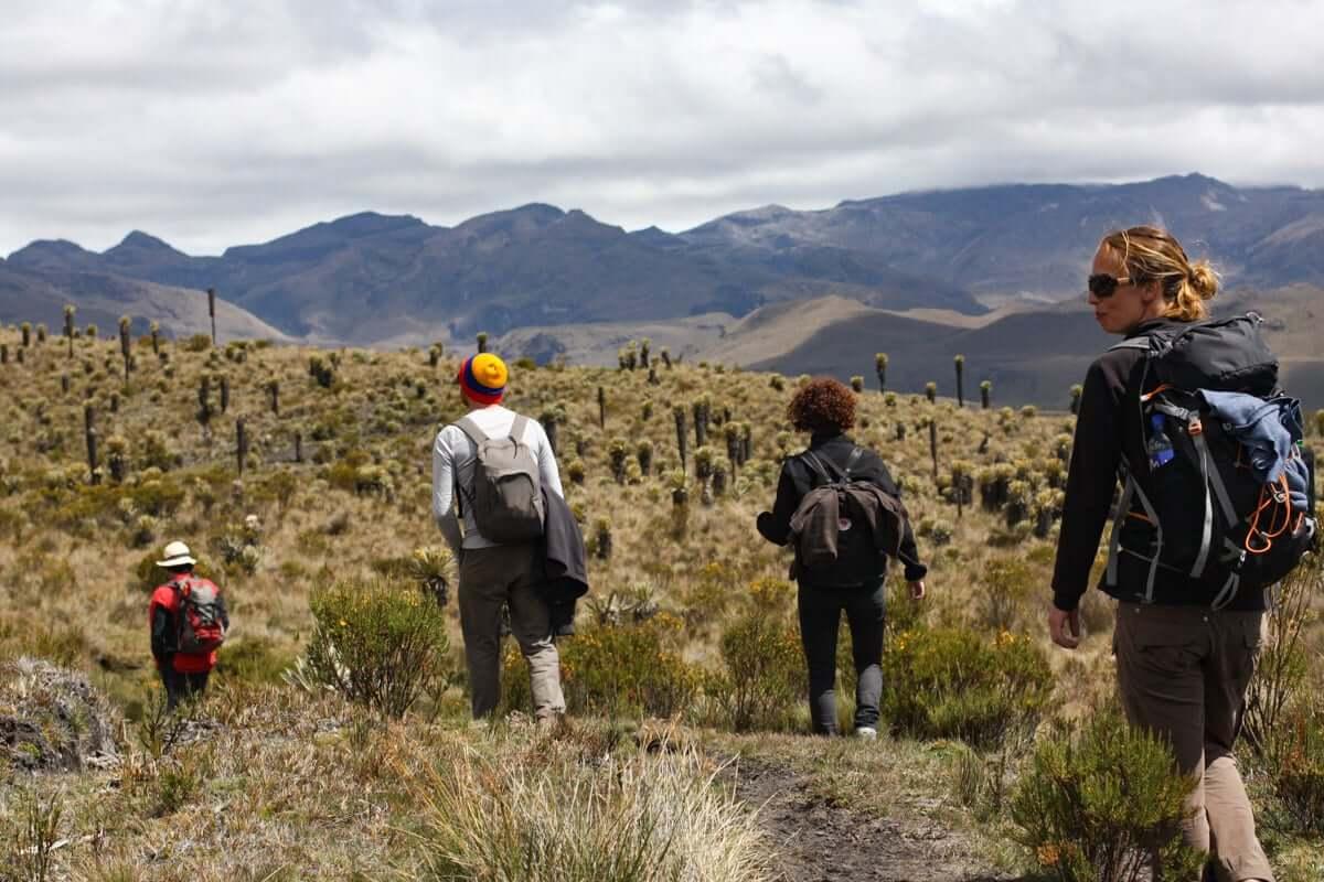 trek parc naturel los nevados en colombie