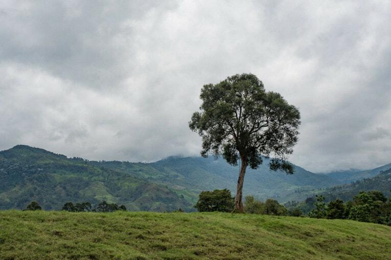 balade à Salento voyage en colombie