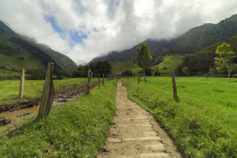 trek dans la vallée de cocora incontournable de colombie