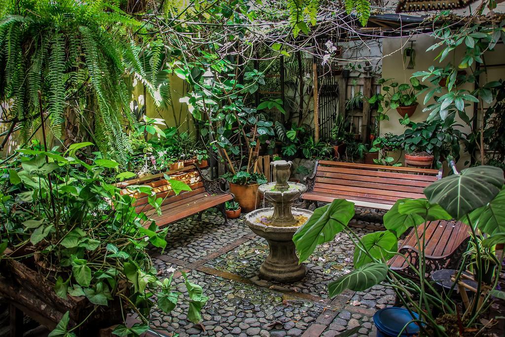 hostel medellin garden of blues