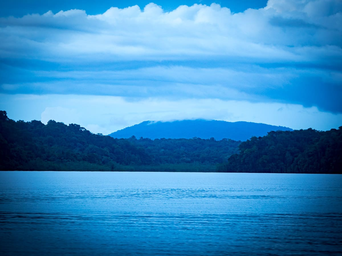 ensenada utria parc naturel côte pacifique près de nuqui colombie