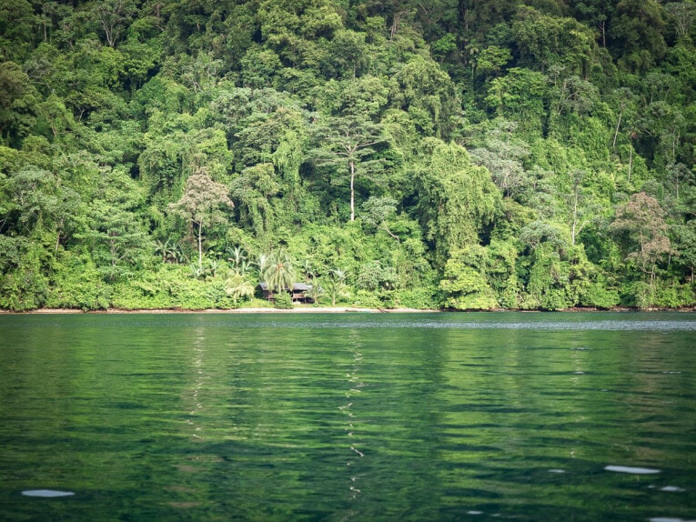 visiter le parc utria sur la côte pacifique de colombie