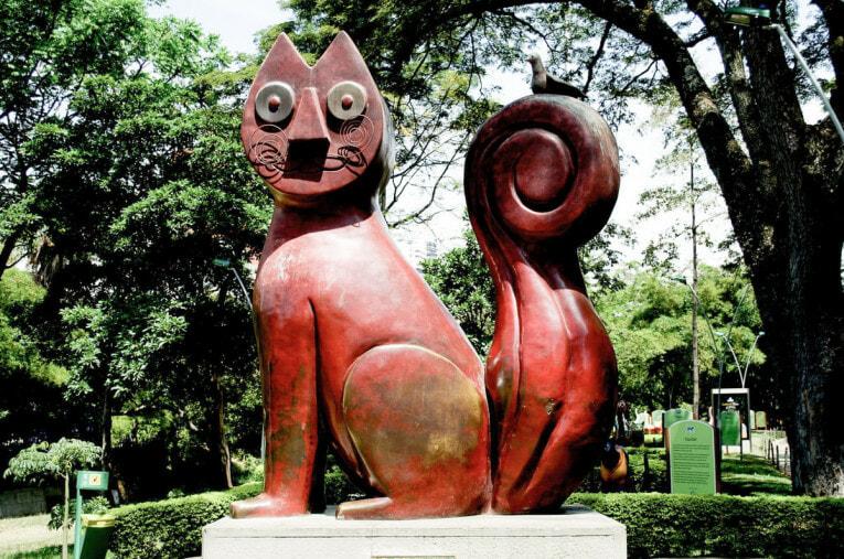 Visiter Cali et son Gato del Rio