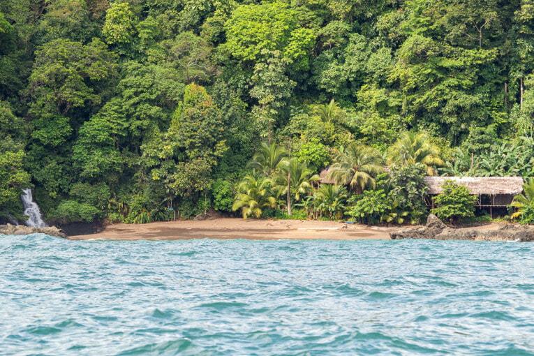 Andando, agence de voyage pour découvrir la côte pacifique du Choco en Colombie