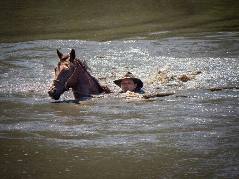 Traversée de la rivière à cheval, Casanare en Colombie
